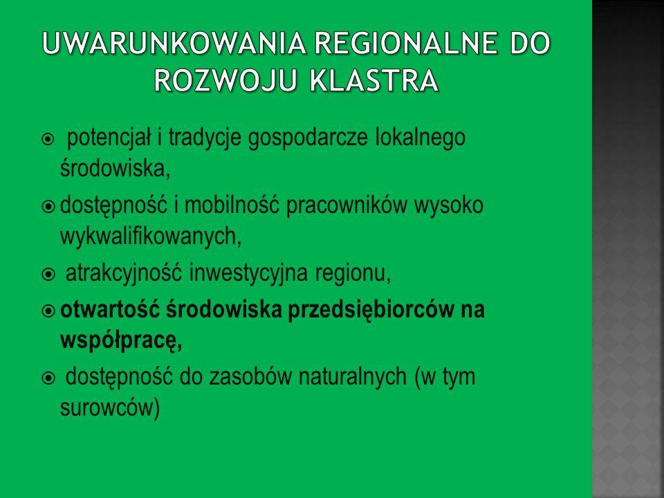 Uwarunkowania regionalne do rozwoju klastra