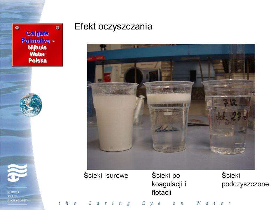 Efekt oczyszczania Ścieki surowe Ścieki po koagulacji i flotacji