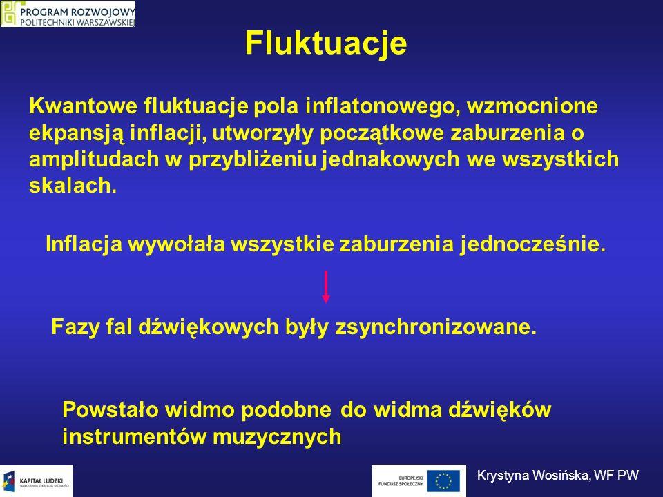 Krystyna Wosińska, WF PW