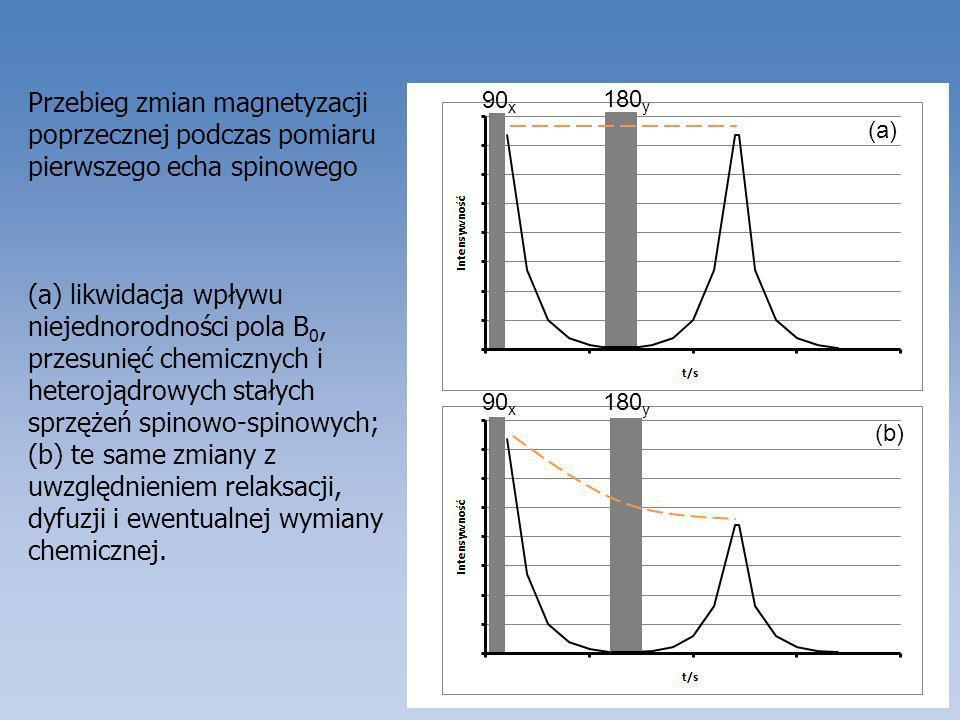 Przebieg zmian magnetyzacji poprzecznej podczas pomiaru pierwszego echa spinowego