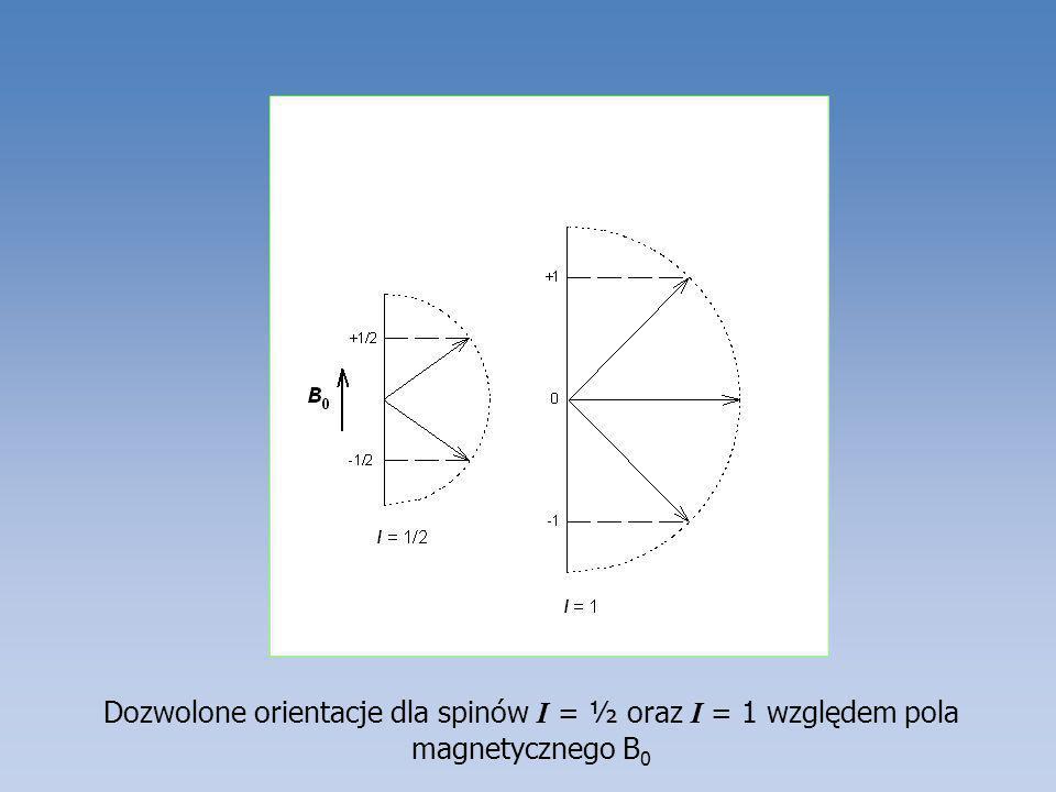 Dozwolone orientacje dla spinów I = ½ oraz I = 1 względem pola magnetycznego B0
