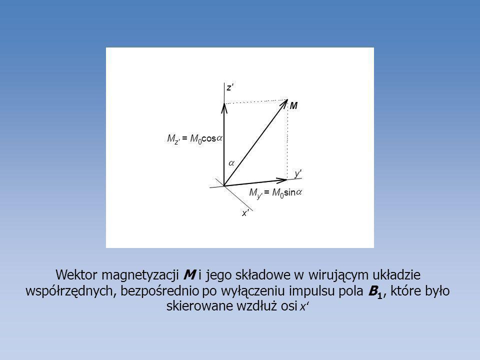 ax. y. z. M. = s. i. n. c. o.