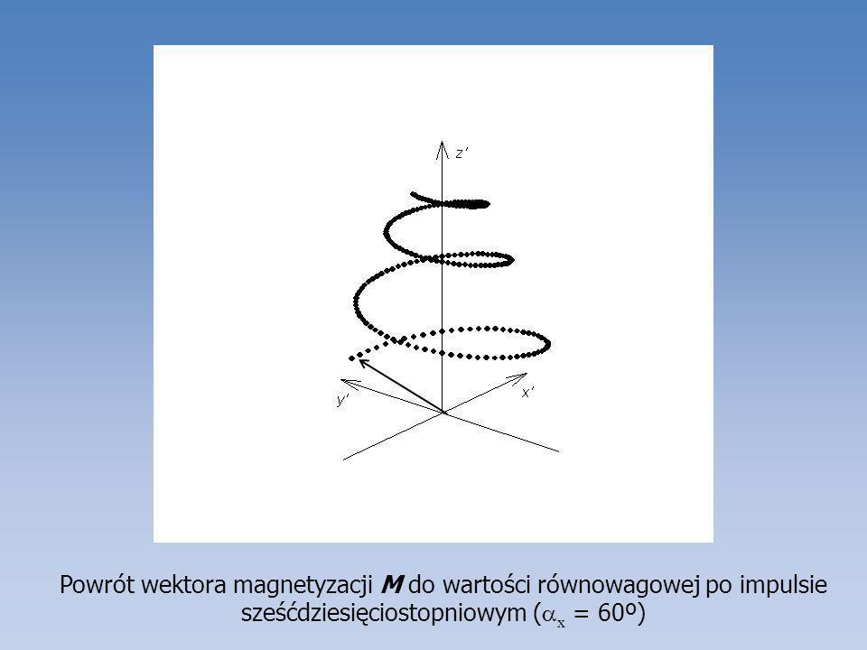 Powrót wektora magnetyzacji M do wartości równowagowej po impulsie sześćdziesięciostopniowym (x = 60º)