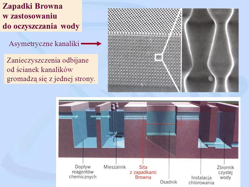 Zapadki Browna w zastosowaniu do oczyszczania wody