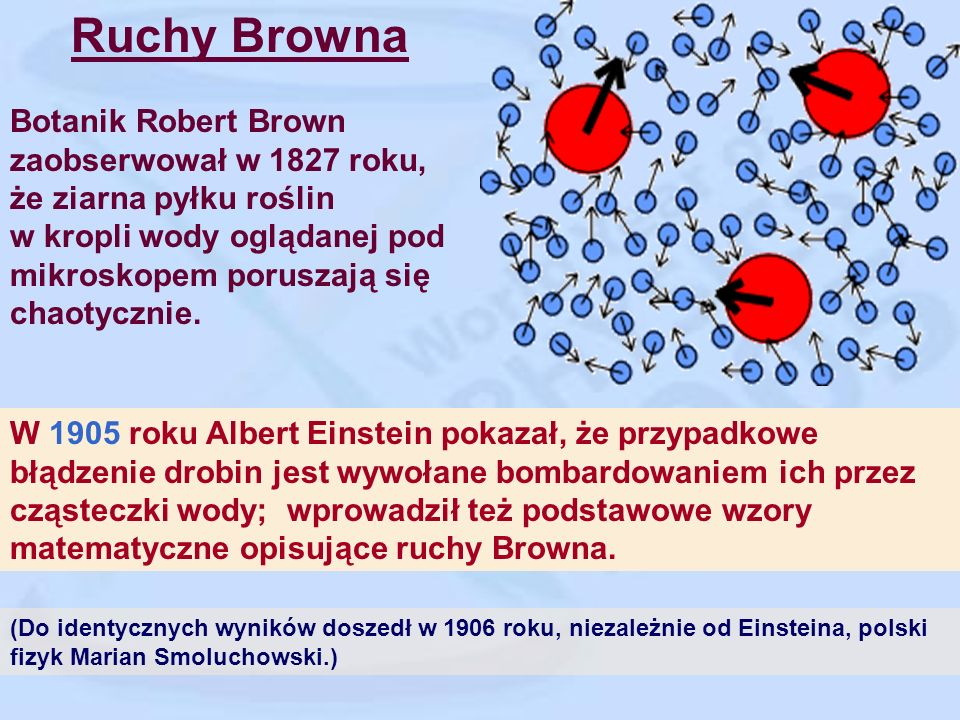 Ruchy Browna Botanik Robert Brown zaobserwował w 1827 roku,