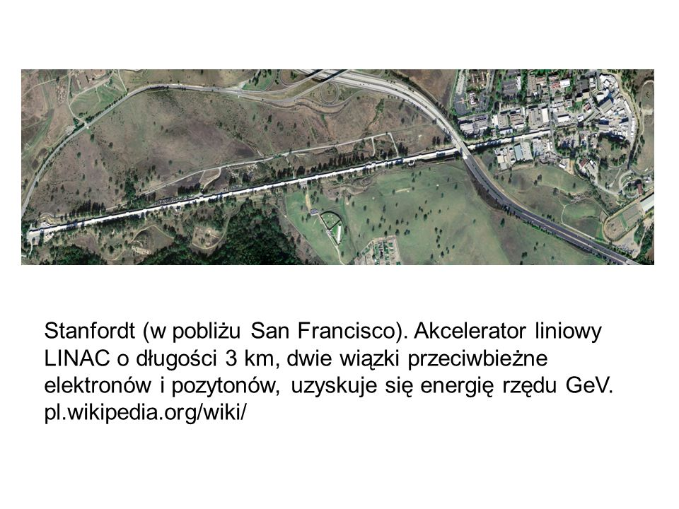 Stanfordt (w pobliżu San Francisco)