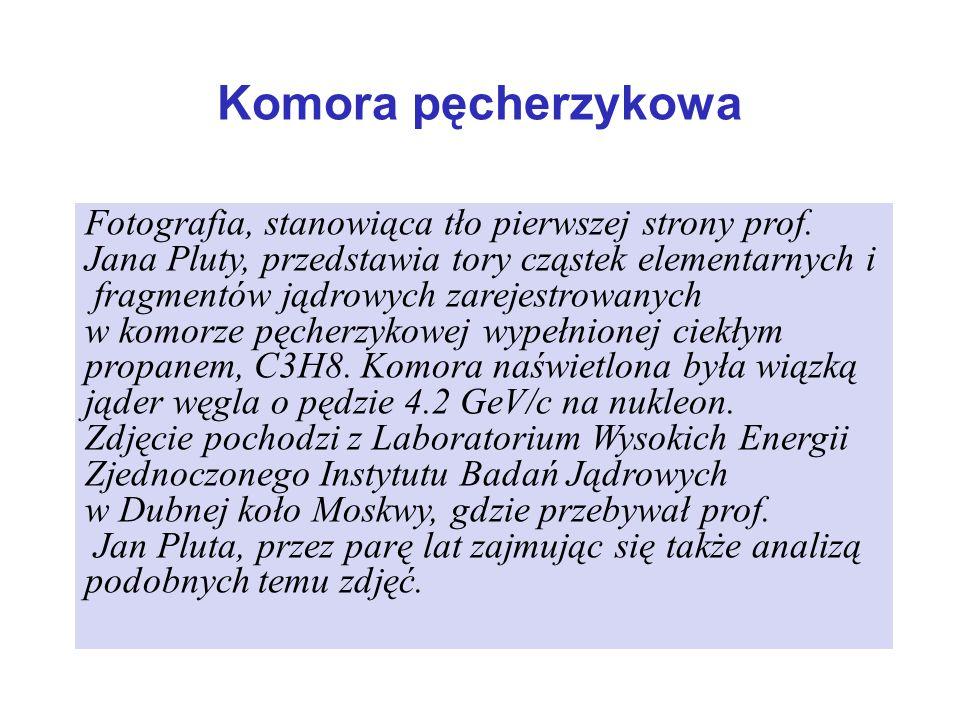 Komora pęcherzykowa Fotografia, stanowiąca tło pierwszej strony prof.