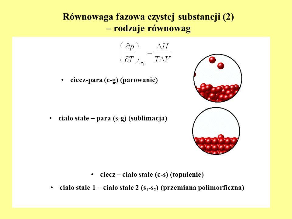 Równowaga fazowa czystej substancji (2) – rodzaje równowag