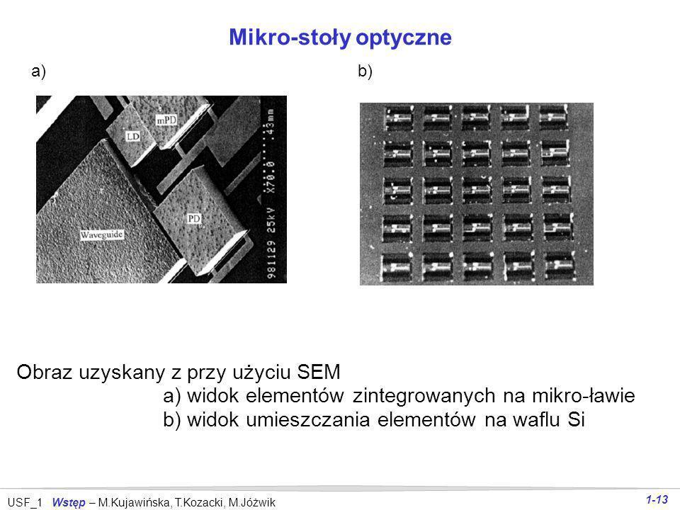 Mikro-stoły optyczne Obraz uzyskany z przy użyciu SEM