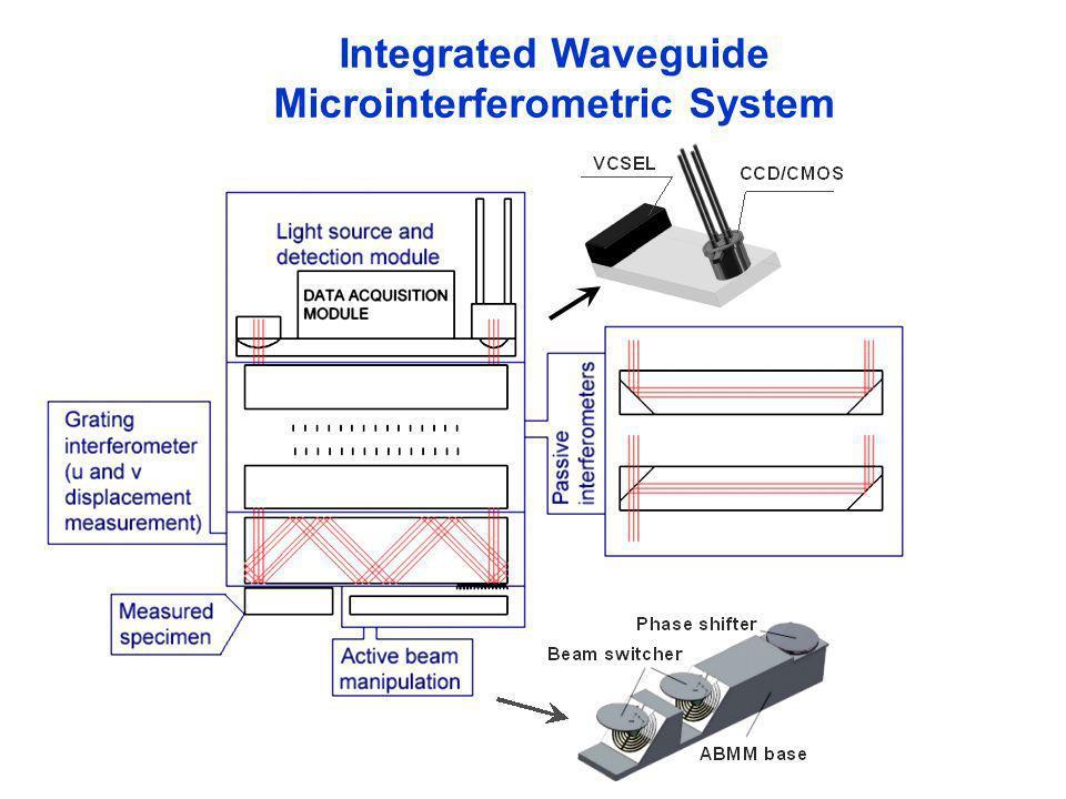 Microinterferometric System