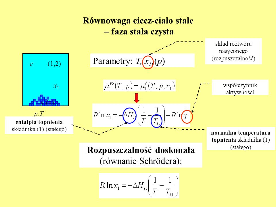 Równowaga ciecz-ciało stałe – faza stała czysta