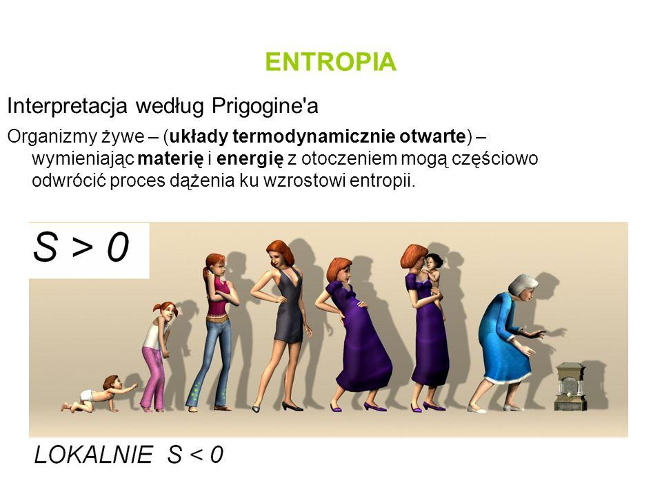 ENTROPIA Interpretacja według Prigogine a
