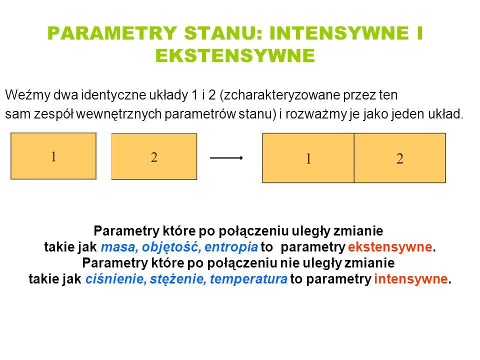 PARAMETRY STANU: INTENSYWNE I EKSTENSYWNE