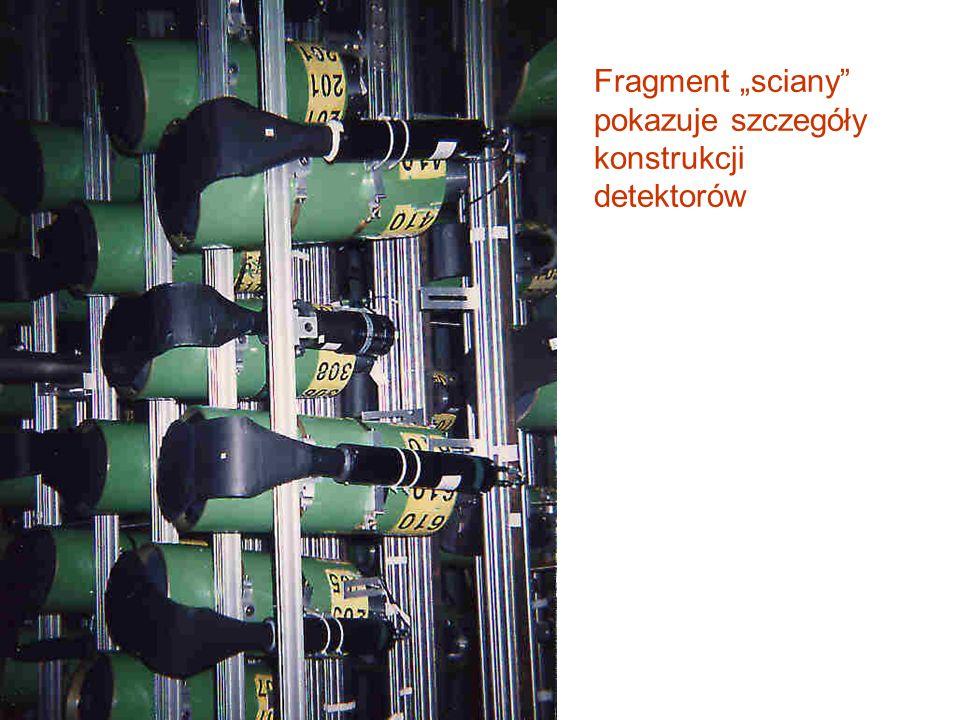 """Fragment """"sciany pokazuje szczegóły konstrukcji detektorów"""