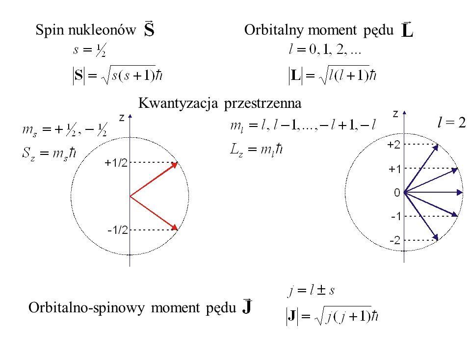 Spin nukleonów Orbitalny moment pędu Kwantyzacja przestrzenna l = 2 Orbitalno-spinowy moment pędu