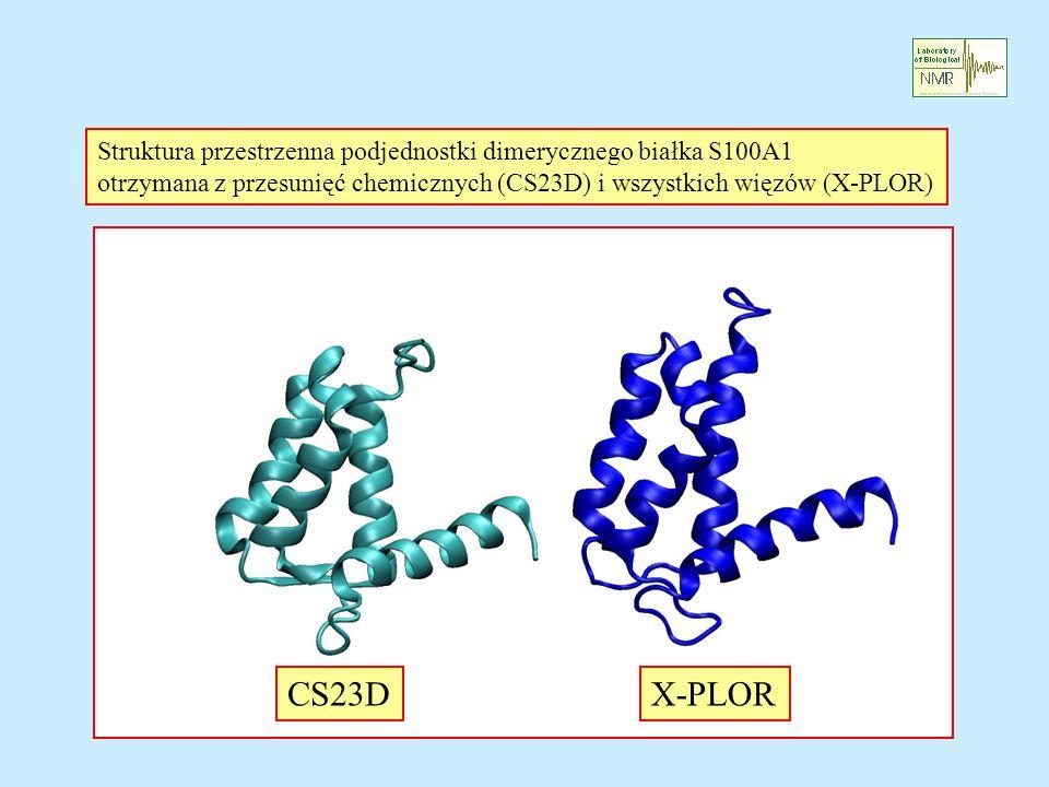 Struktura przestrzenna podjednostki dimerycznego białka S100A1