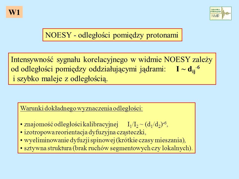 NOESY - odległości pomiędzy protonami