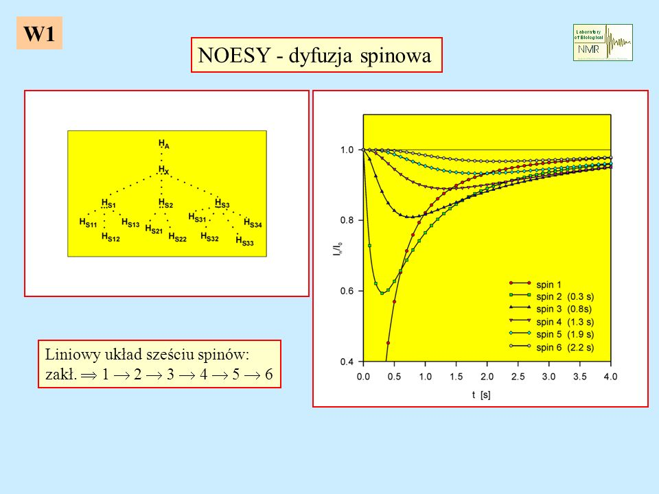 NOESY - dyfuzja spinowa
