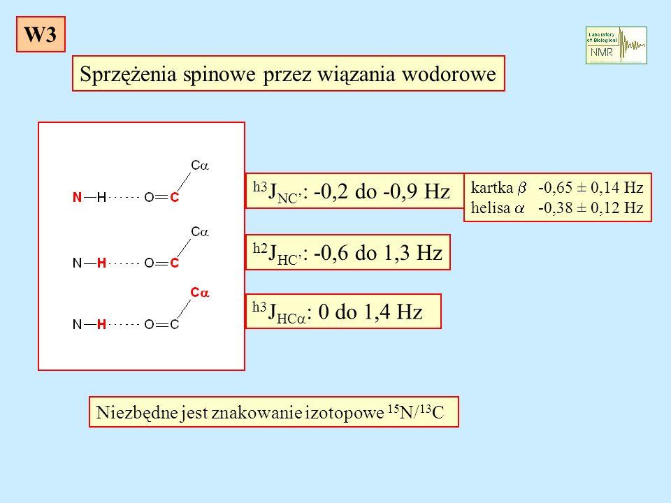 Sprzężenia spinowe przez wiązania wodorowe