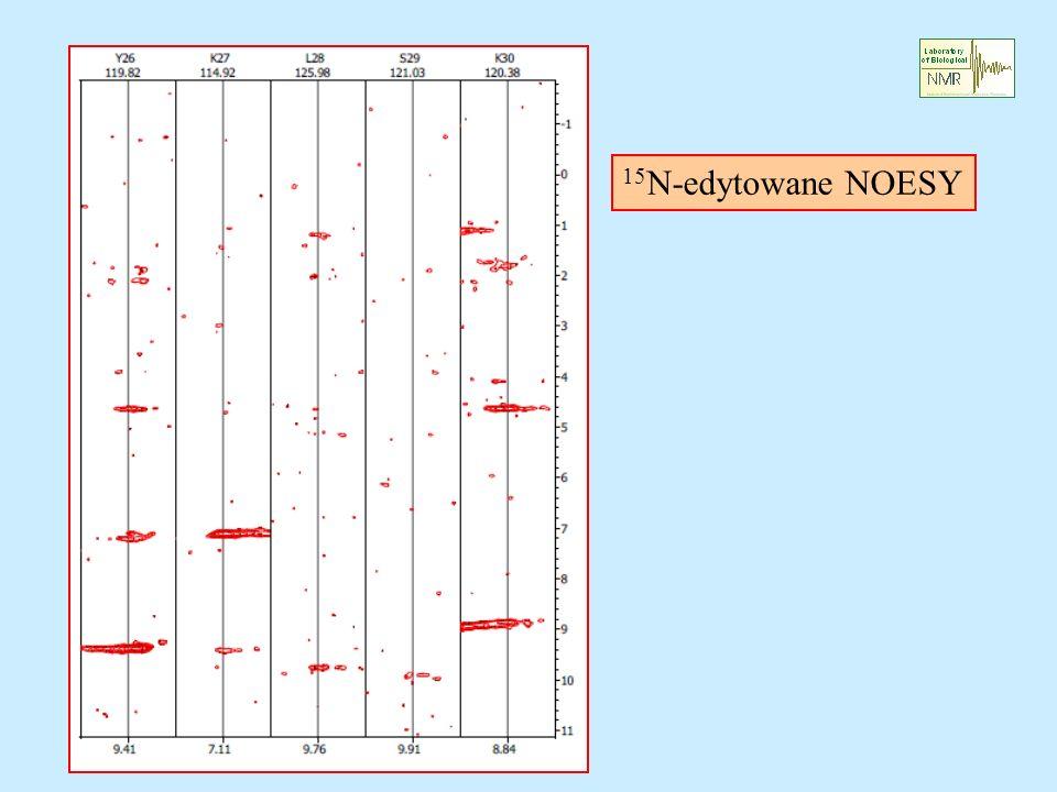 15N-edytowane NOESY