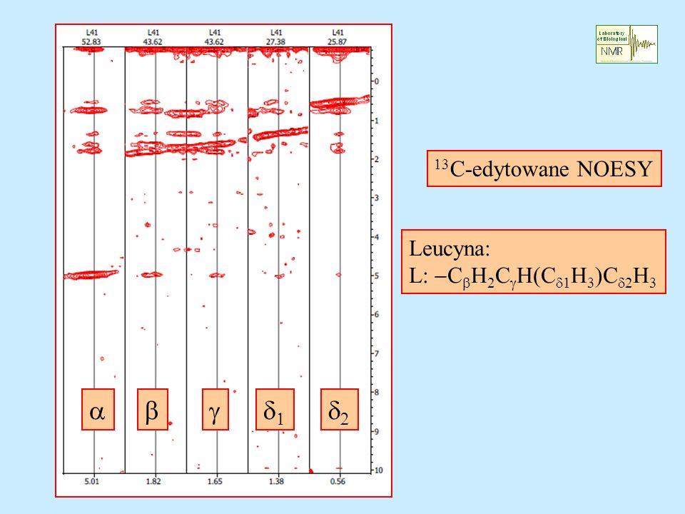 13C-edytowane NOESY Leucyna: L: CbH2CgH(Cd1H3)Cd2H3 a b g d1 d2