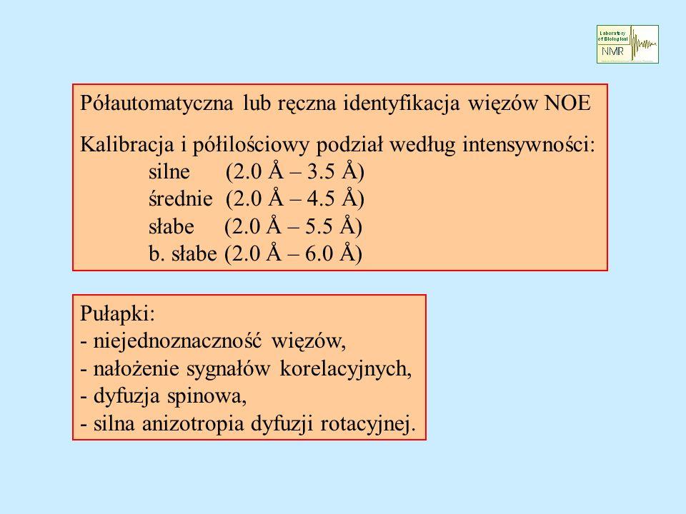 Półautomatyczna lub ręczna identyfikacja więzów NOE