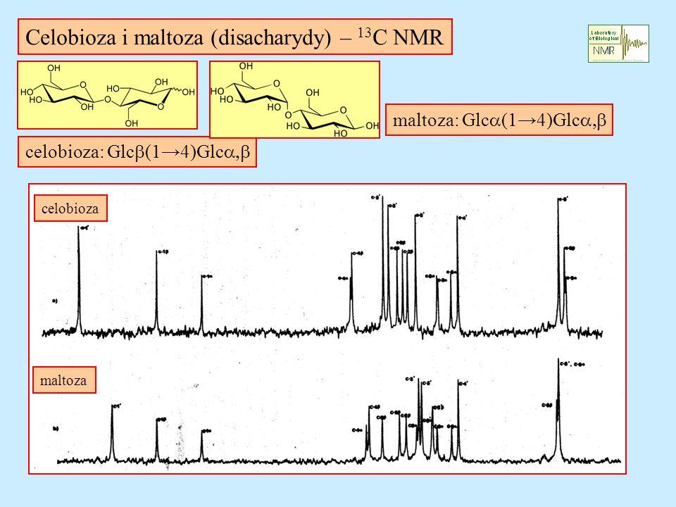 Celobioza i maltoza (disacharydy) – 13C NMR