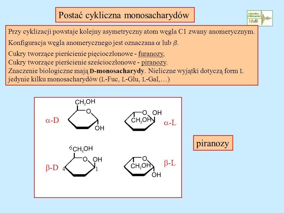 Postać cykliczna monosacharydów
