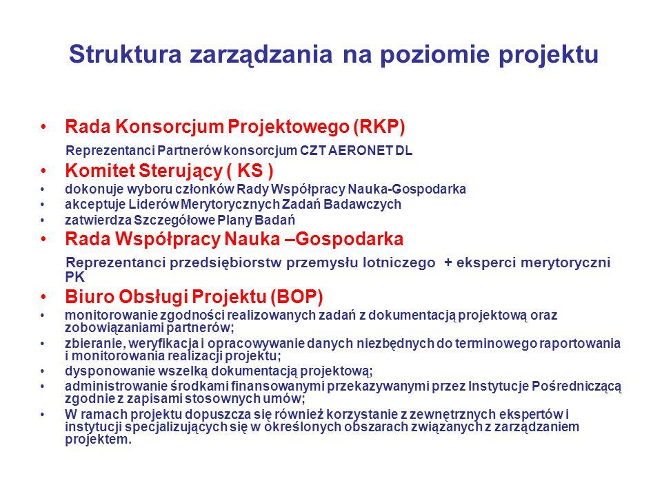 Struktura zarządzania na poziomie projektu