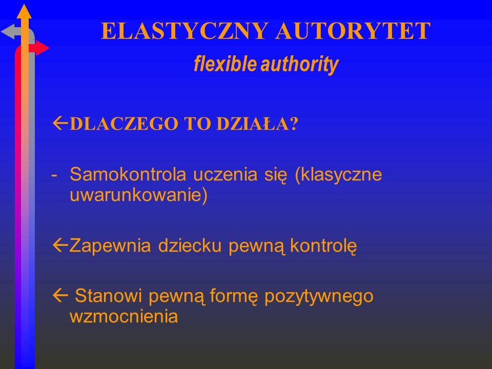 ELASTYCZNY AUTORYTET flexible authority