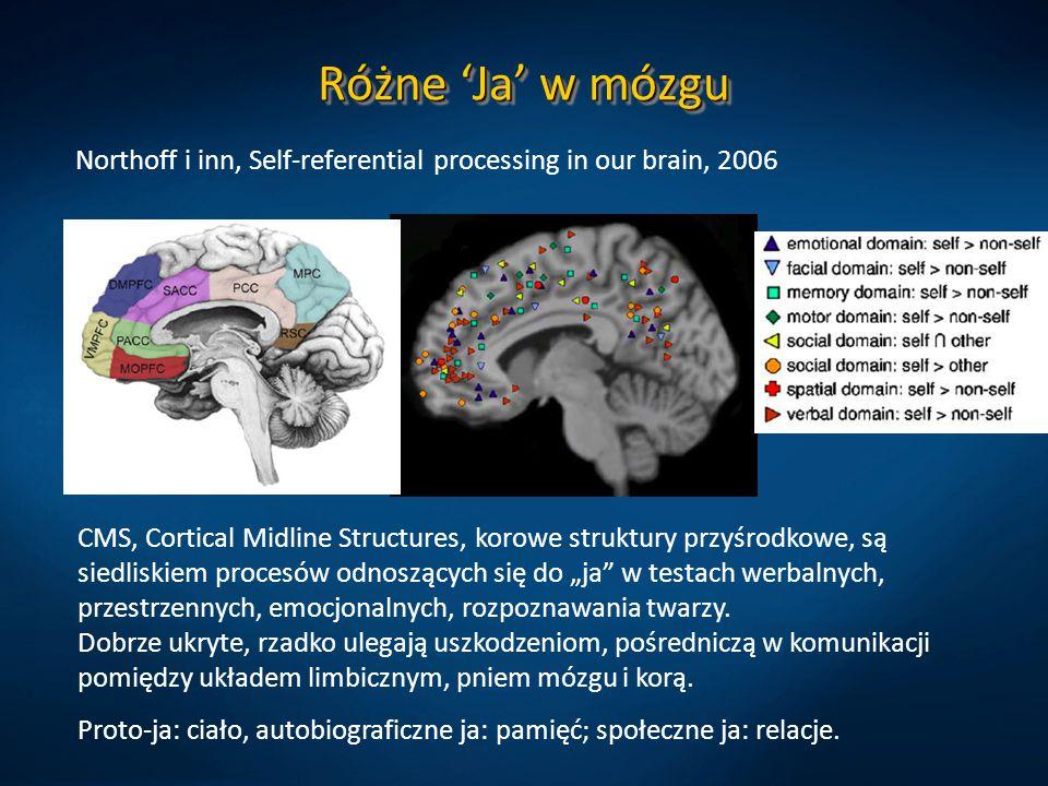 Różne 'Ja' w mózgu Northoff i inn, Self-referential processing in our brain, 2006.