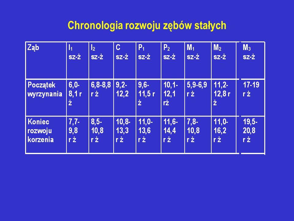 Chronologia rozwoju zębów stałych