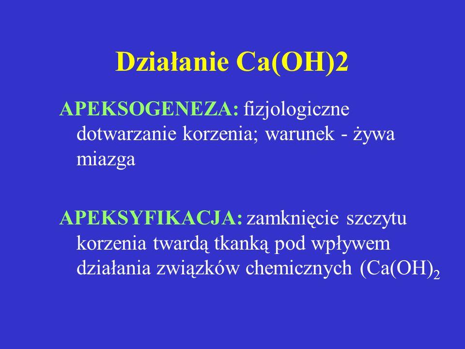 Działanie Ca(OH)2APEKSOGENEZA: fizjologiczne dotwarzanie korzenia; warunek - żywa miazga.