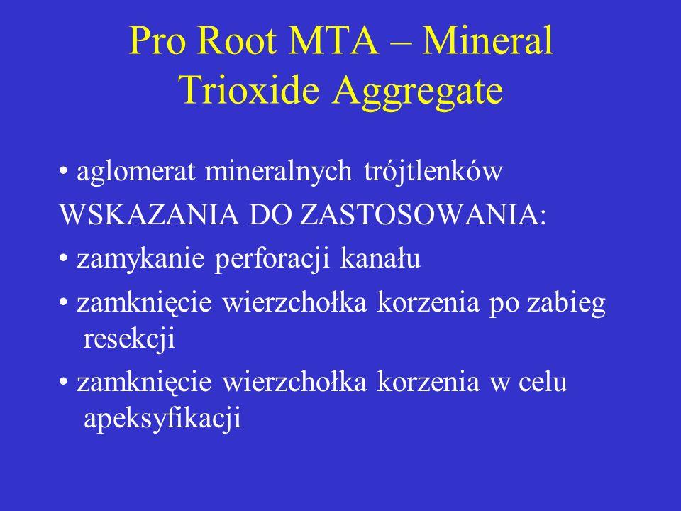 Pro Root MTA – Mineral Trioxide Aggregate