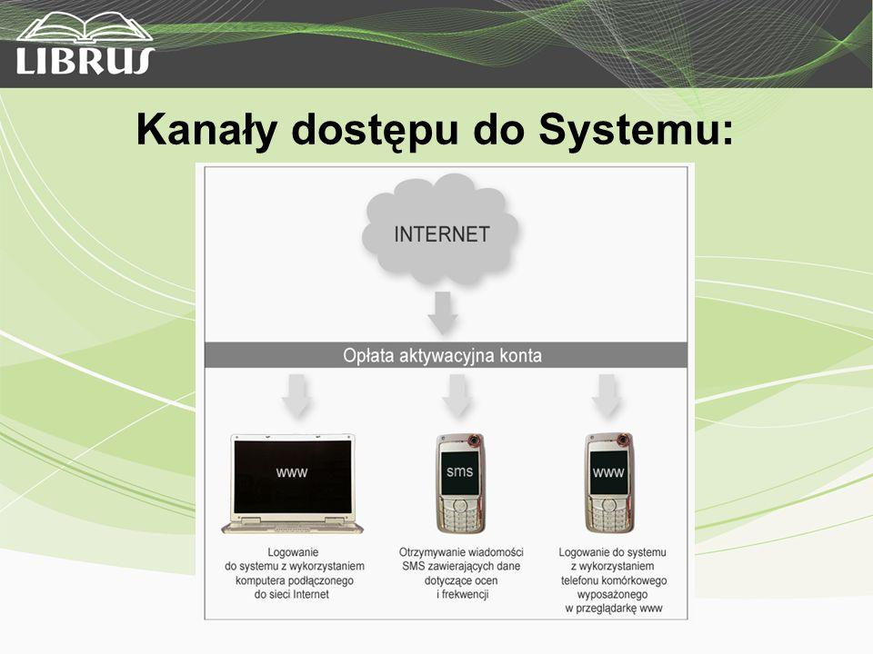 Kanały dostępu do Systemu: