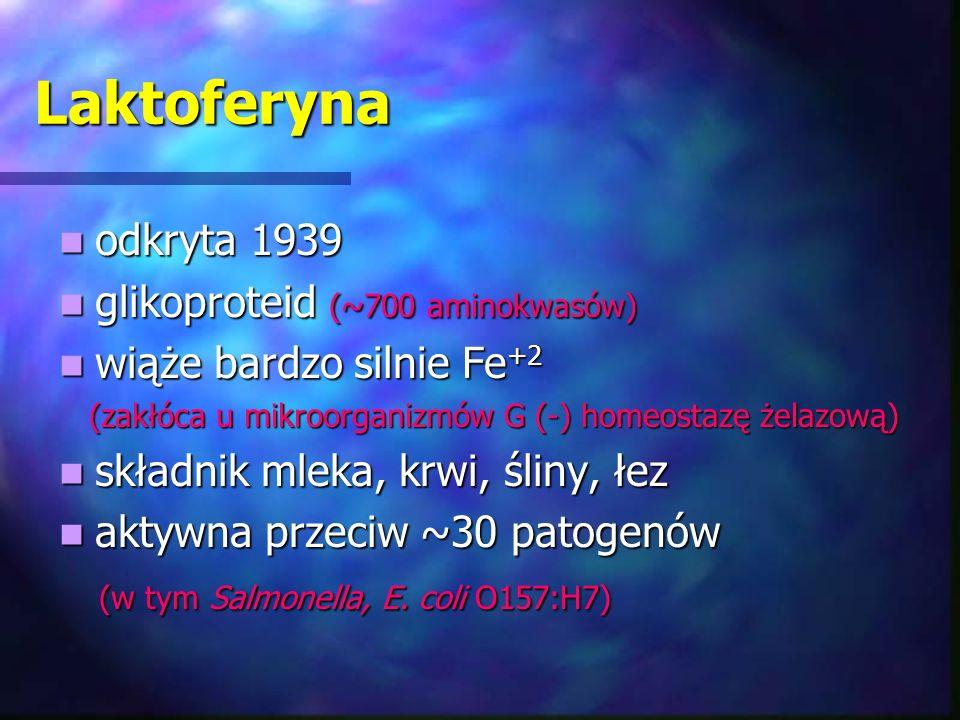 Laktoferyna odkryta 1939 glikoproteid (~700 aminokwasów)