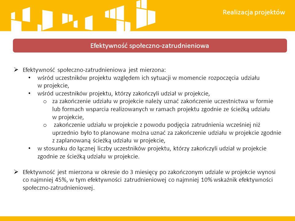 Efektywność społeczno-zatrudnieniowa