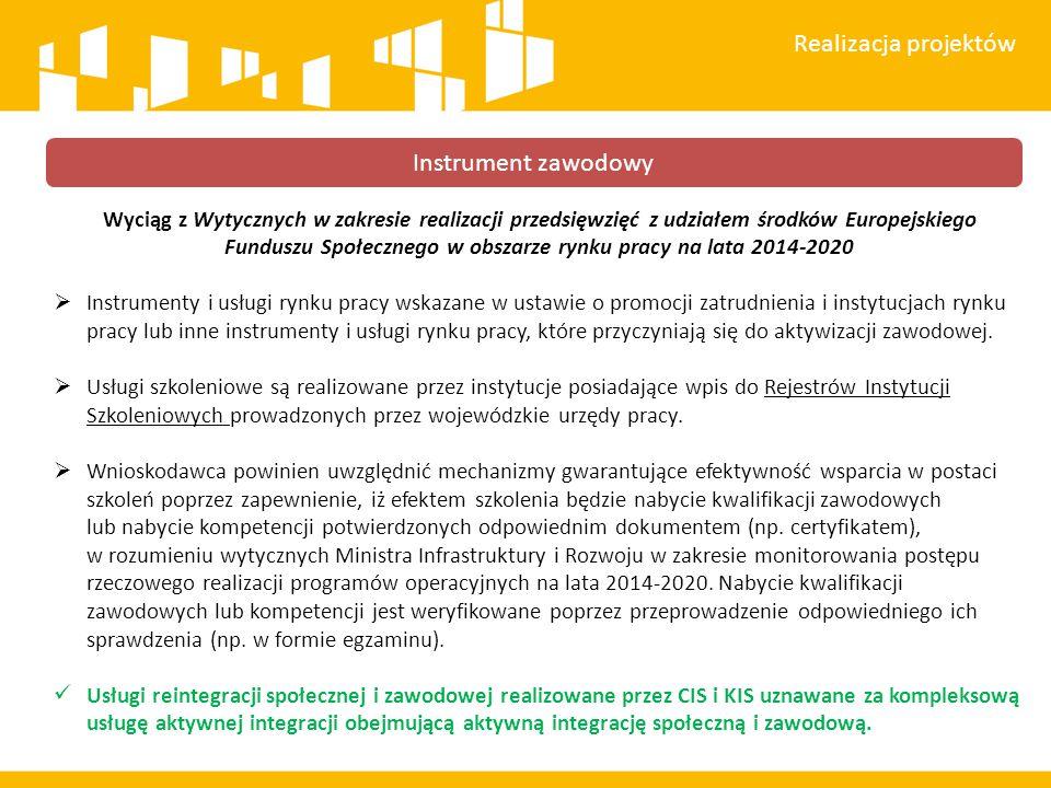 Realizacja projektów Instrument zawodowy