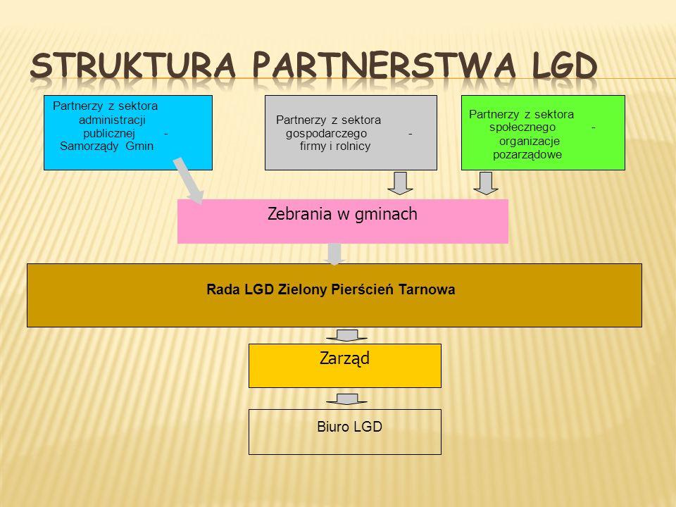 Struktura Partnerstwa LGD