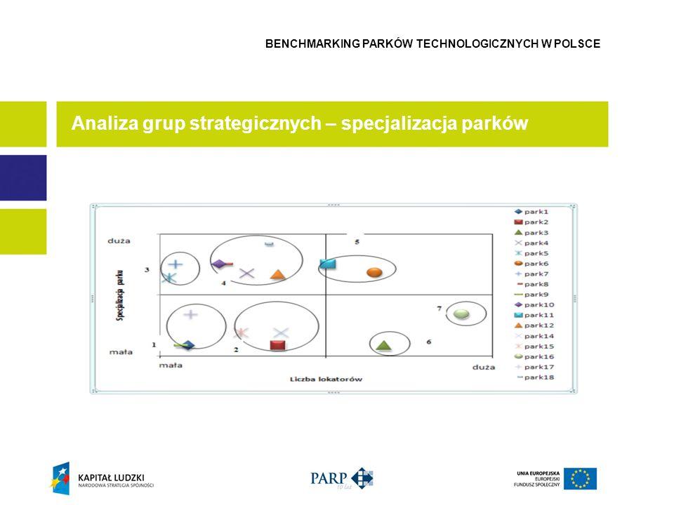 Analiza grup strategicznych – specjalizacja parków
