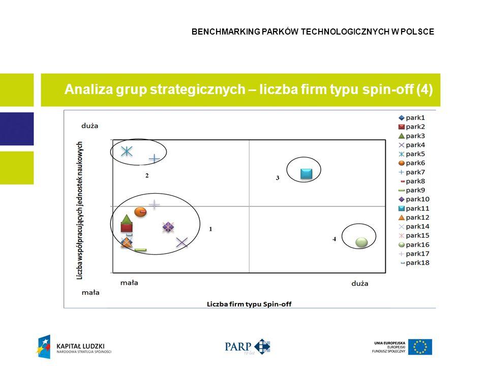 Analiza grup strategicznych – liczba firm typu spin-off (4)