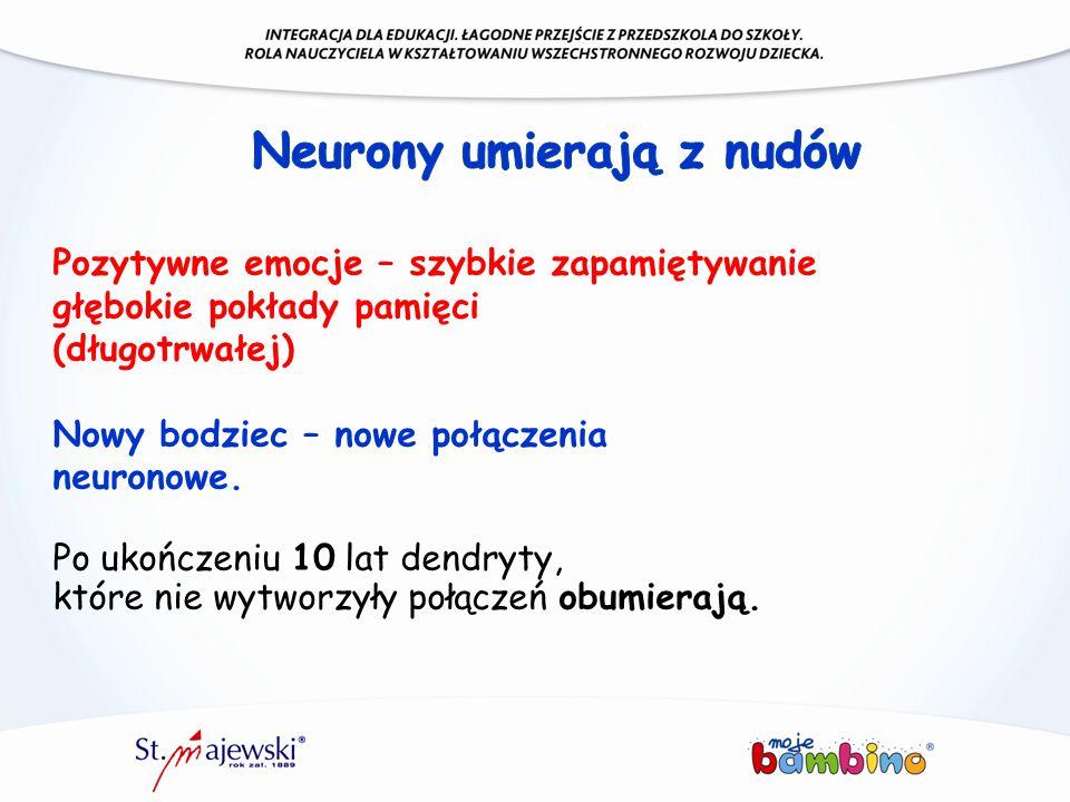 Neurony umierają z nudów