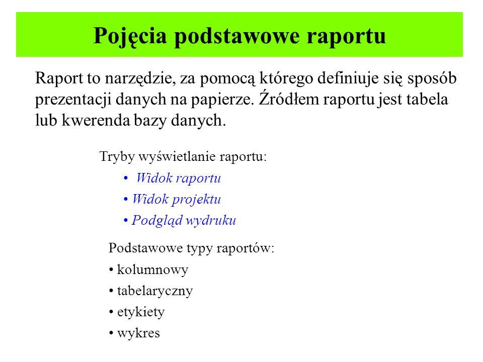 Pojęcia podstawowe raportu