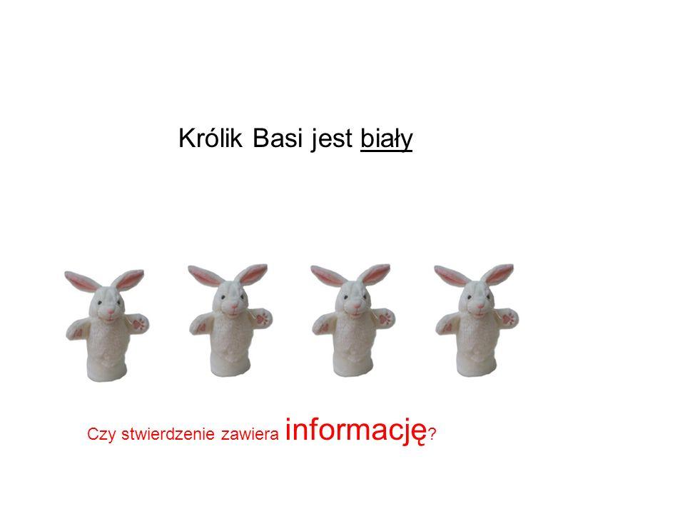 Królik Basi jest biały Czy stwierdzenie zawiera informację