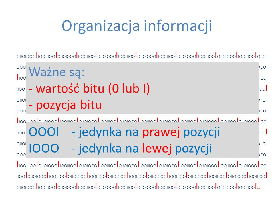 Organizacja informacji