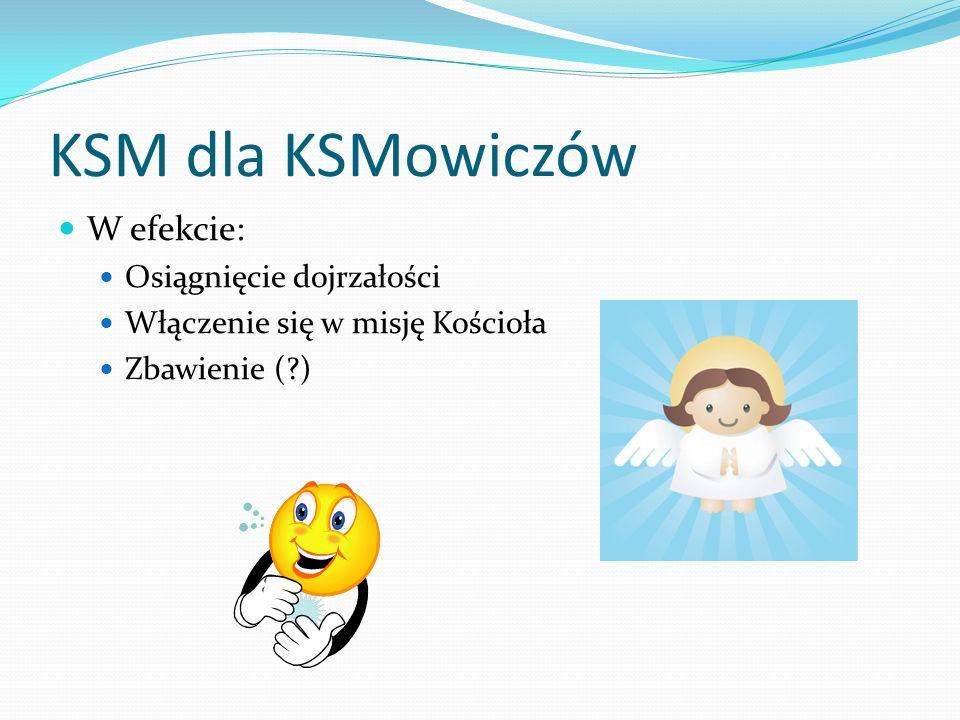 KSM dla KSMowiczów W efekcie: Osiągnięcie dojrzałości