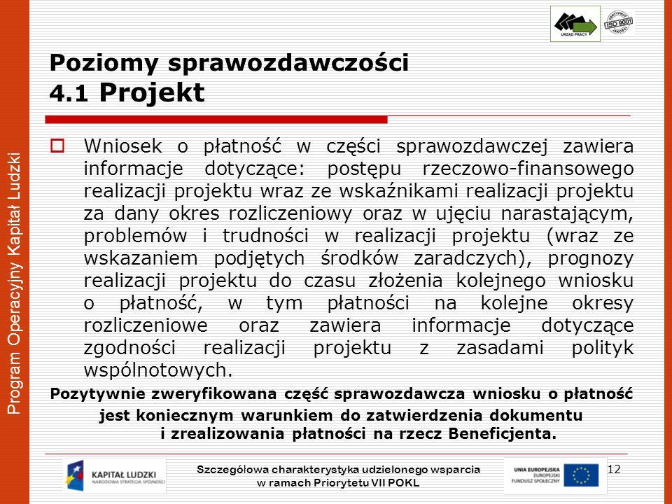 Poziomy sprawozdawczości 4.1 Projekt