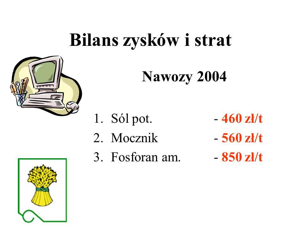 Bilans zysków i strat Nawozy 2004 Sól pot. - 460 zł/t