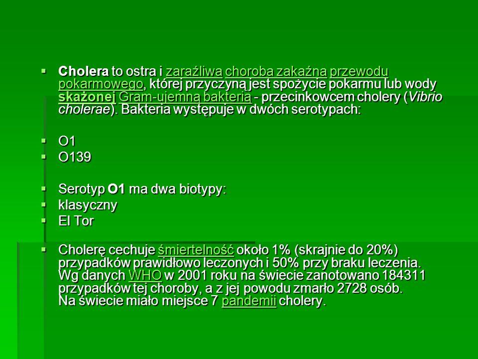 Cholera to ostra i zaraźliwa choroba zakaźna przewodu pokarmowego, której przyczyną jest spożycie pokarmu lub wody skażonej Gram-ujemną bakterią - przecinkowcem cholery (Vibrio cholerae). Bakteria występuje w dwóch serotypach: