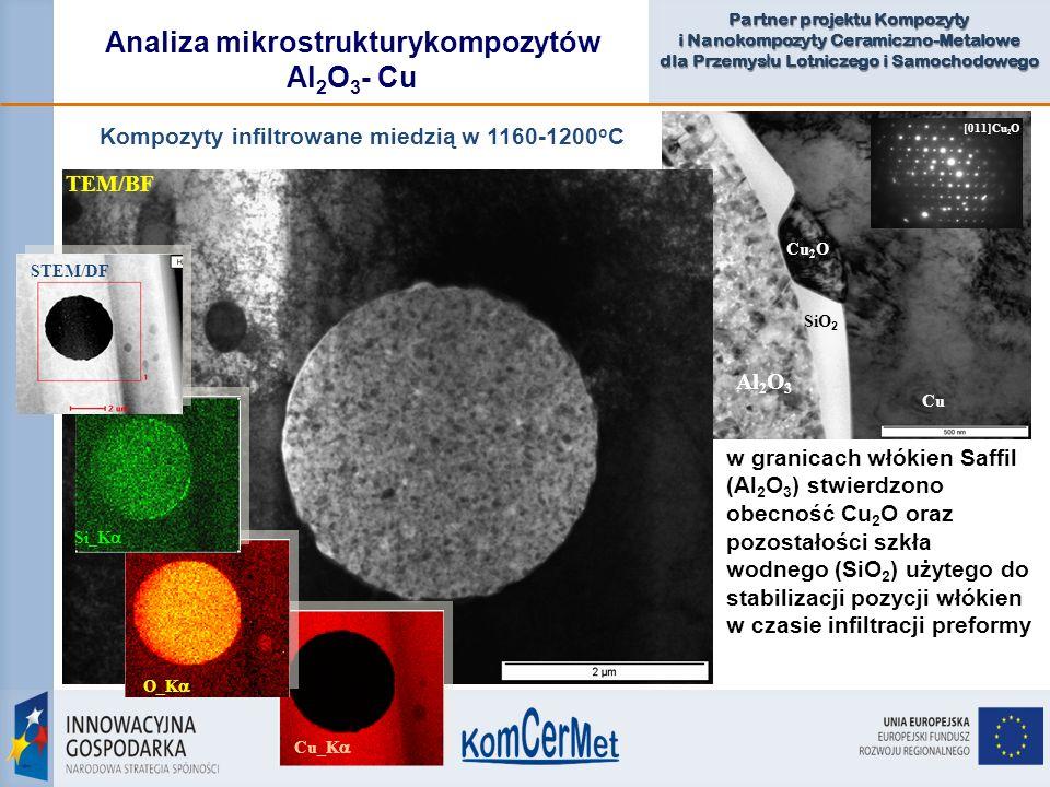 Analiza mikrostrukturykompozytów Al2O3- Cu